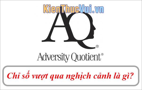 AQ (Adversity Quotient) Chỉ số vượt qua nghịch cảnh là gì?