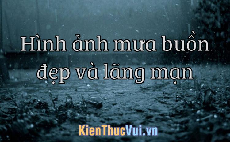 Những hình ảnh mưa buồn đẹp và lãng mạn nhất