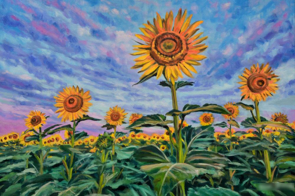 Hình ảnh tranh vẽ cánh đồng hoa Hướng Dương đẹp