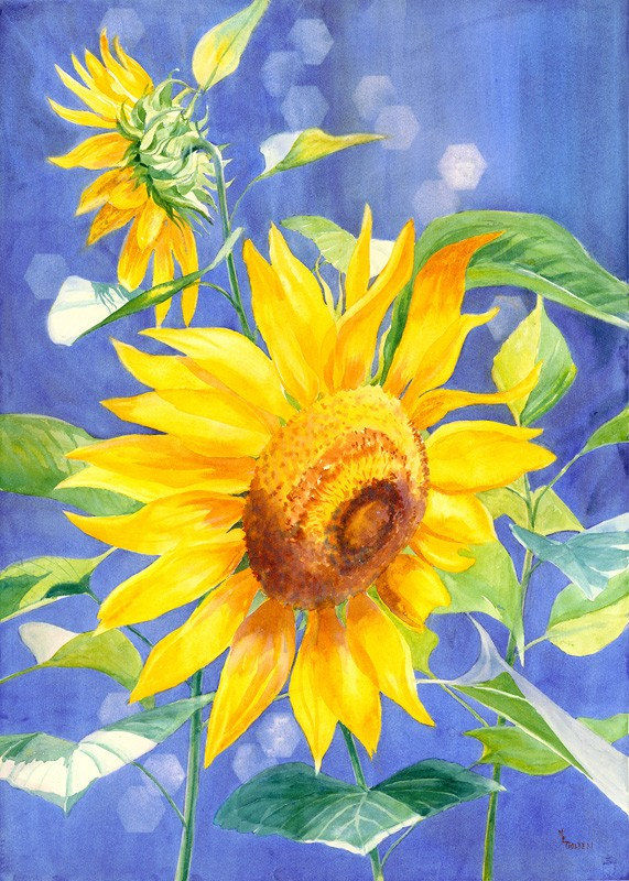 Hình bức tranh vẽ hoa Hướng Dương