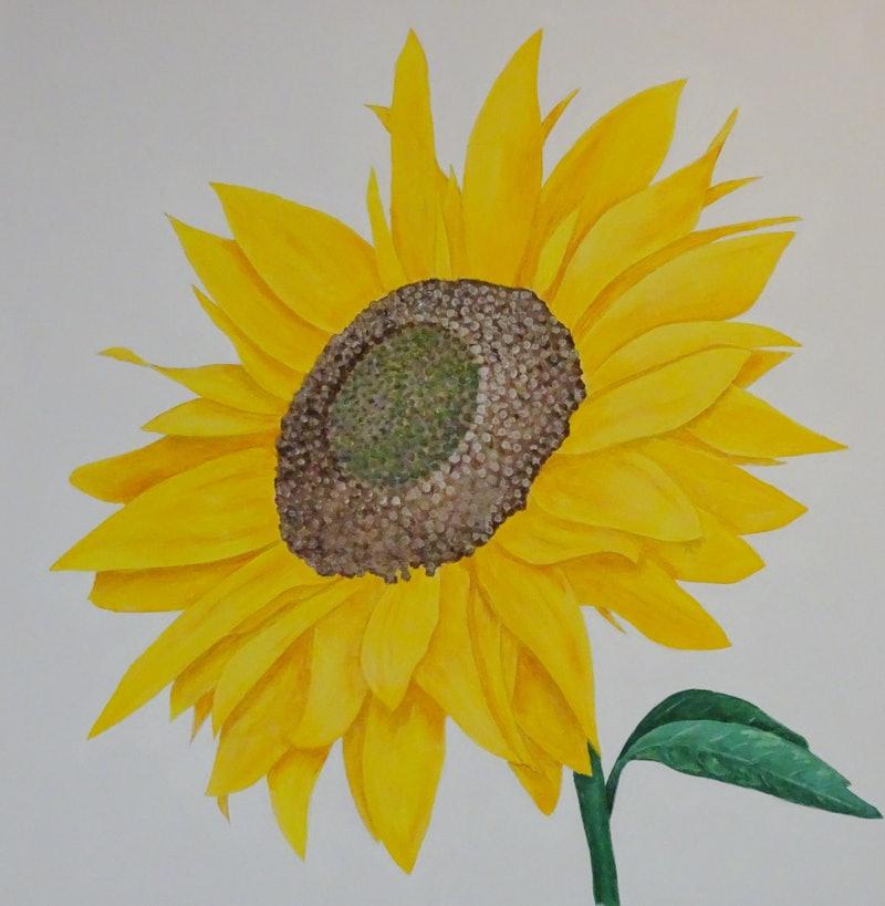 Tranh vẽ bông hoa Hướng Dương đẹp nhất