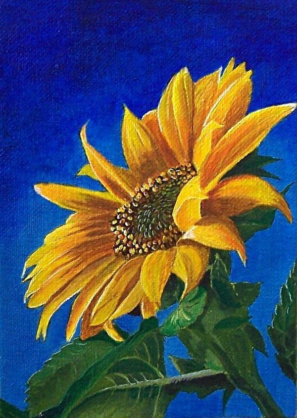 Tranh vẽ hoa Hướng Dương đẹp