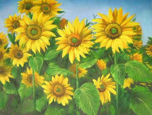 Tranh vẽ sơn dầu cánh đồng hoa Hướng Dương đẹp