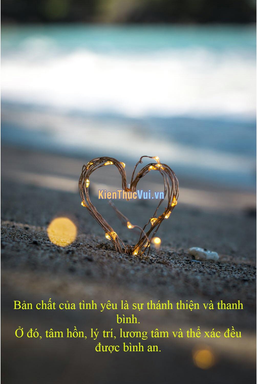 Bản chất của tình yêu là sự thánh thiện và thanh bình