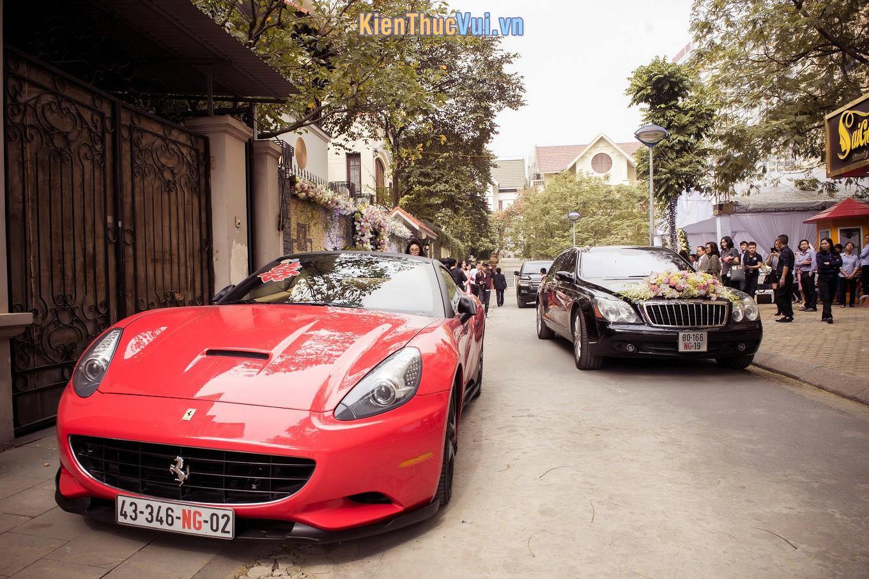 Biển số xe màu trắng dành cho cá nhân, doanh nghiệp