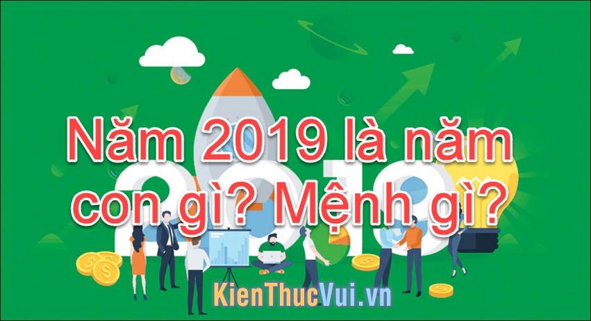 Năm 2019 là năm con gì, mệnh gì?