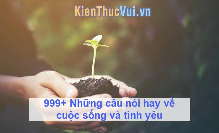 999+ Những câu nói hay về cuộc sống và tình yêu
