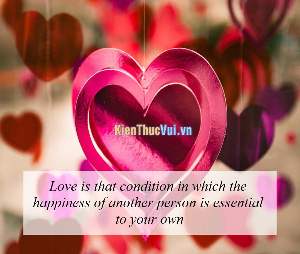 Tình yêu là trạng thái mà khi đó hạnh phúc của một người khác trở nên cực kỳ quan trọng đối với hạnh phúc của bạn