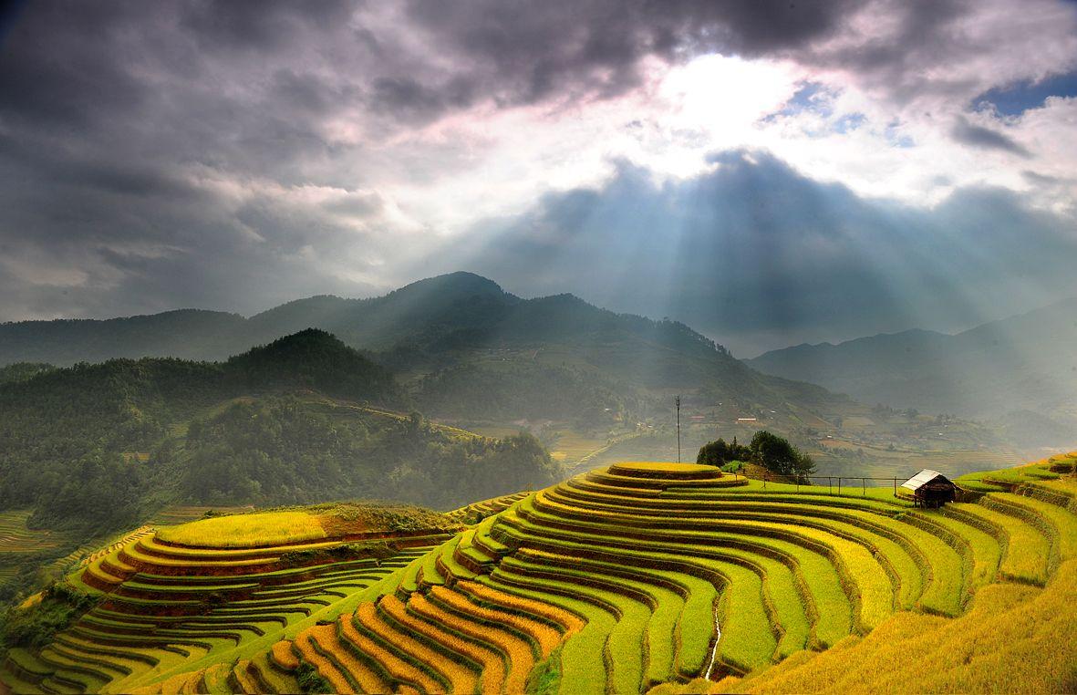 Hình ảnh phong cảnh đẹp ở Sapa
