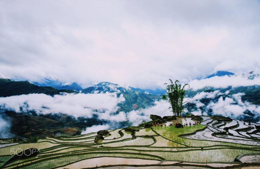 Hình ảnh Sapa Lào Cai đẹp