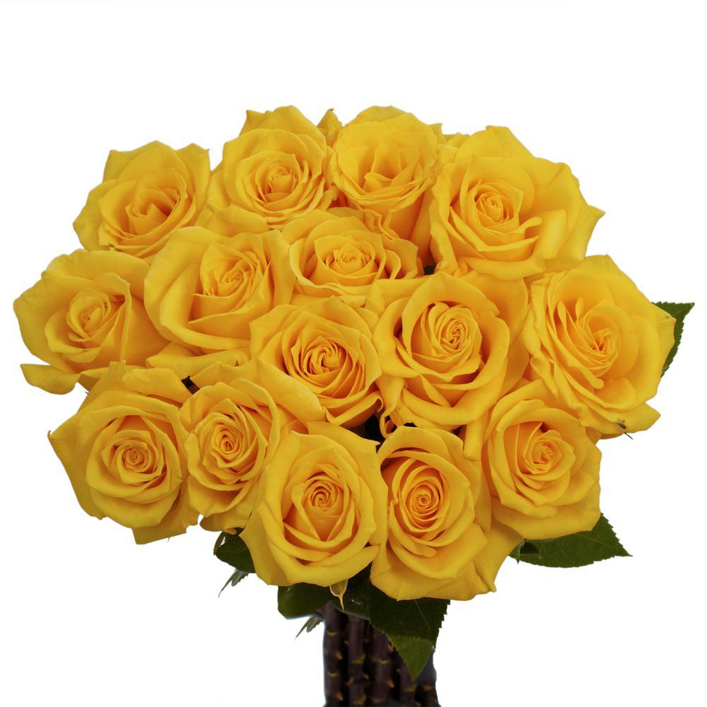 Hình ảnh bó hoa hồng vàng cực đẹp