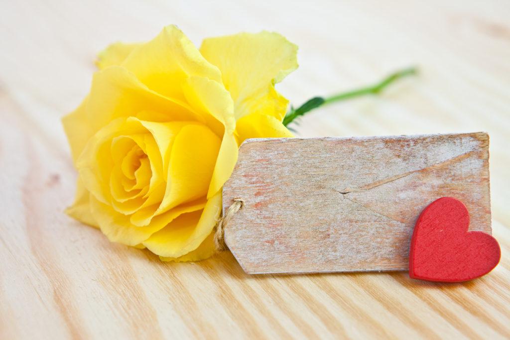 Hình ảnh bông hoa hồng vàng đẹp