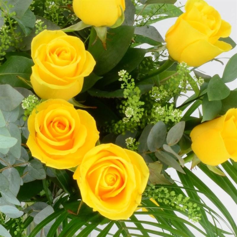 Hình hoa hồng đẹp nhất
