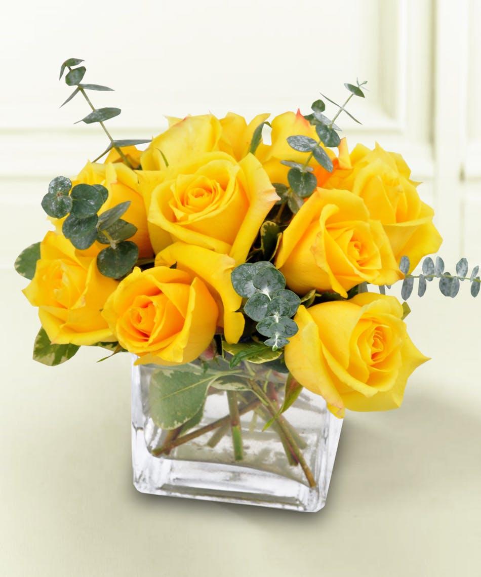 Hình hoa Hồng vàng đẹp nhất