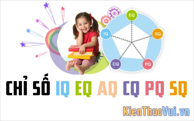 Các chỉ số IQ, EQ, AQ, CQ, PQ, SQ là gì? Khác nhau như thế nào?