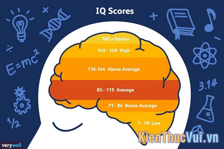 Chỉ số IQ
