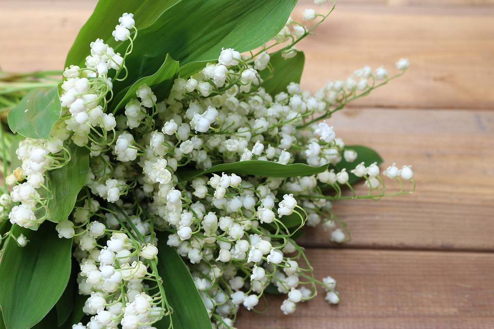 Ảnh bó hoa Linh lan cho cô dâu trong ngày cưới