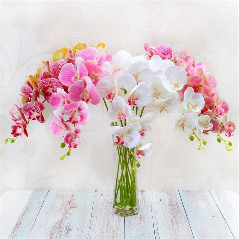 Hình ảnh đẹp về lọ hoa Lan Hồ Điệp
