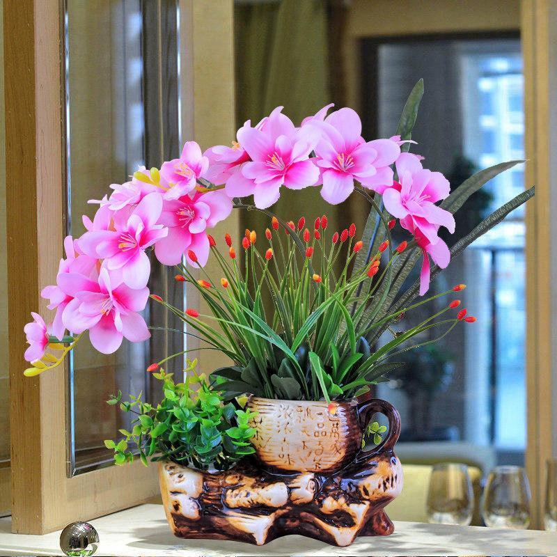 Hình ảnh hoa lan Hồ Điệp rừng