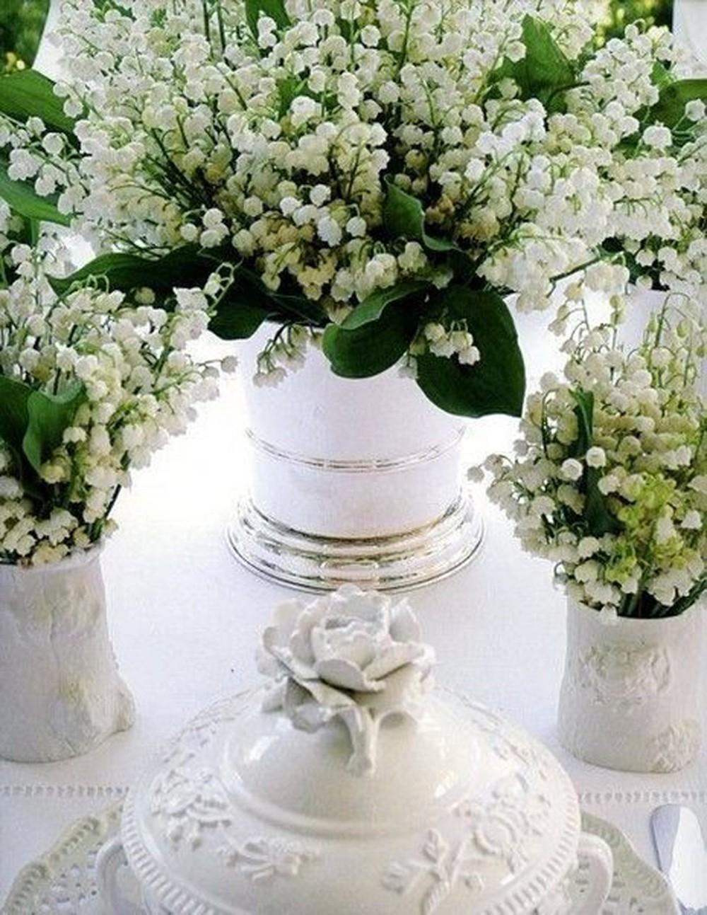 Hình ảnh những lọ hoa Linh lan đẹp nhất