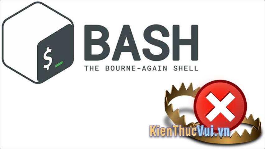 Bash trong ngôn ngữ lập trình