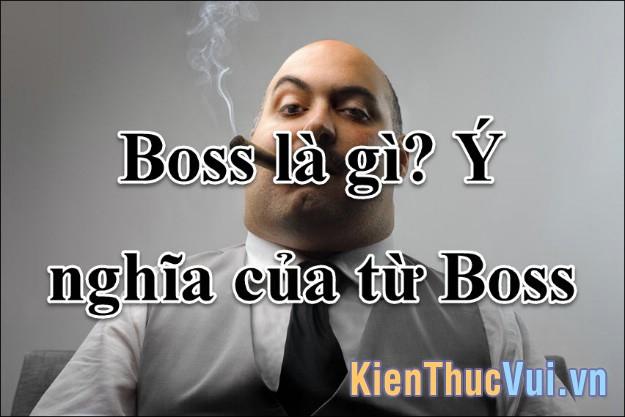 Boss là gì Ý nghĩa của từ Boss