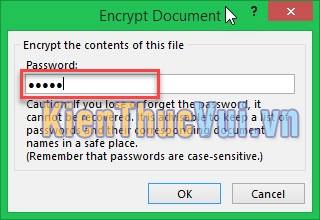 Đặt mật khẩu cho file Excel