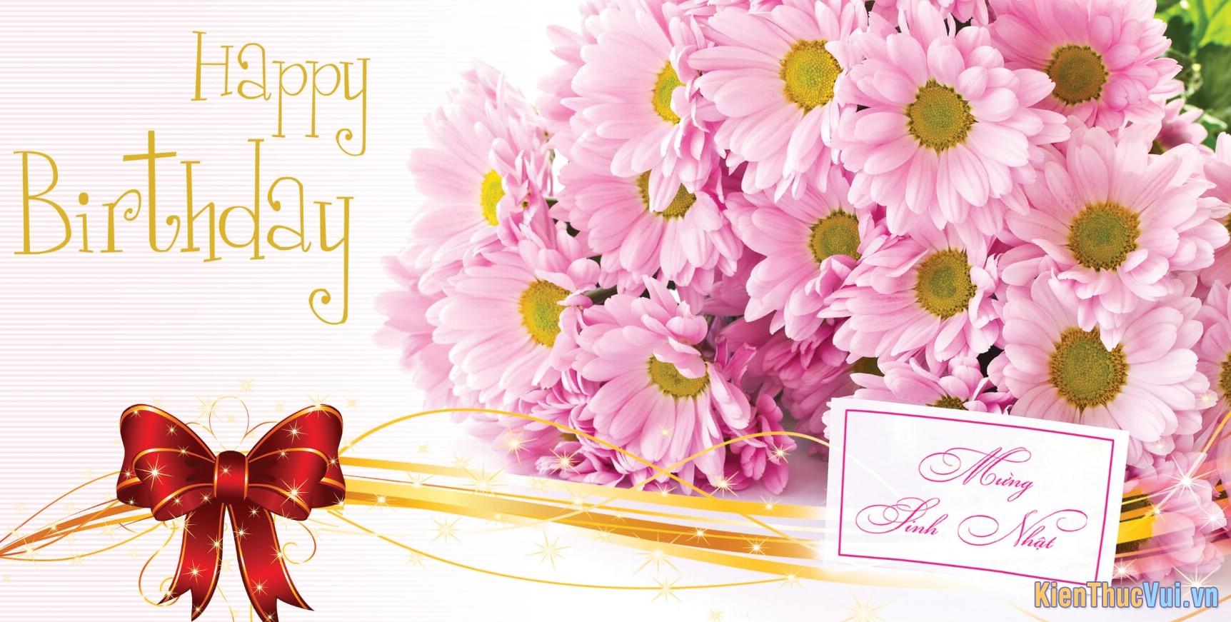 Chúc bạn Sinh nhật đầy áp yêu thương và tiếng cười
