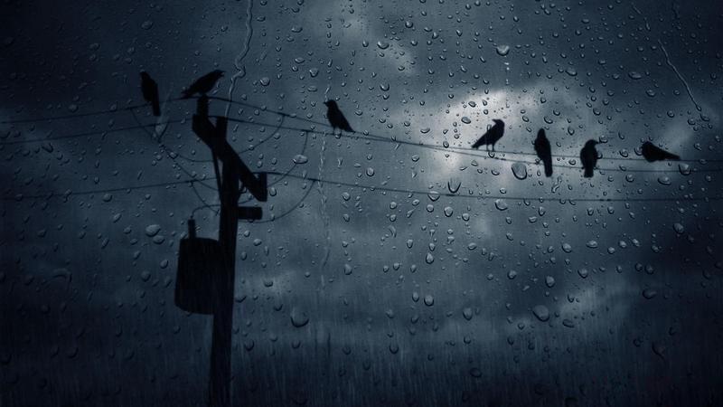 Hình ảnh cơn mưa đen tối