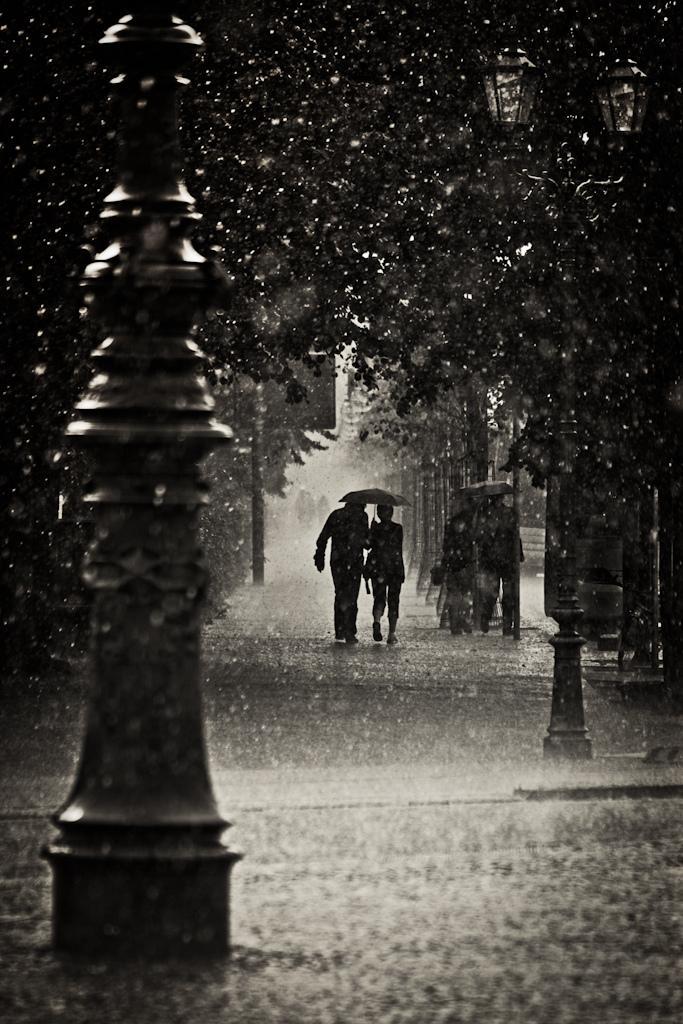 Hình ảnh đẹp cơn mưa tình yêu