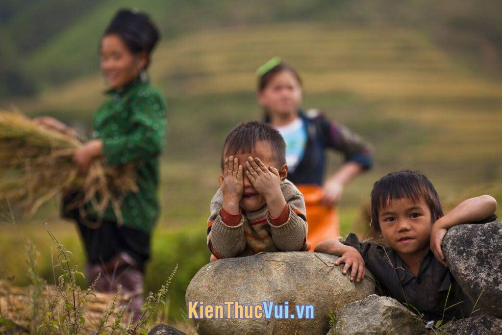 Cuộc sống vất vả của những đứa trẻ vùng cao