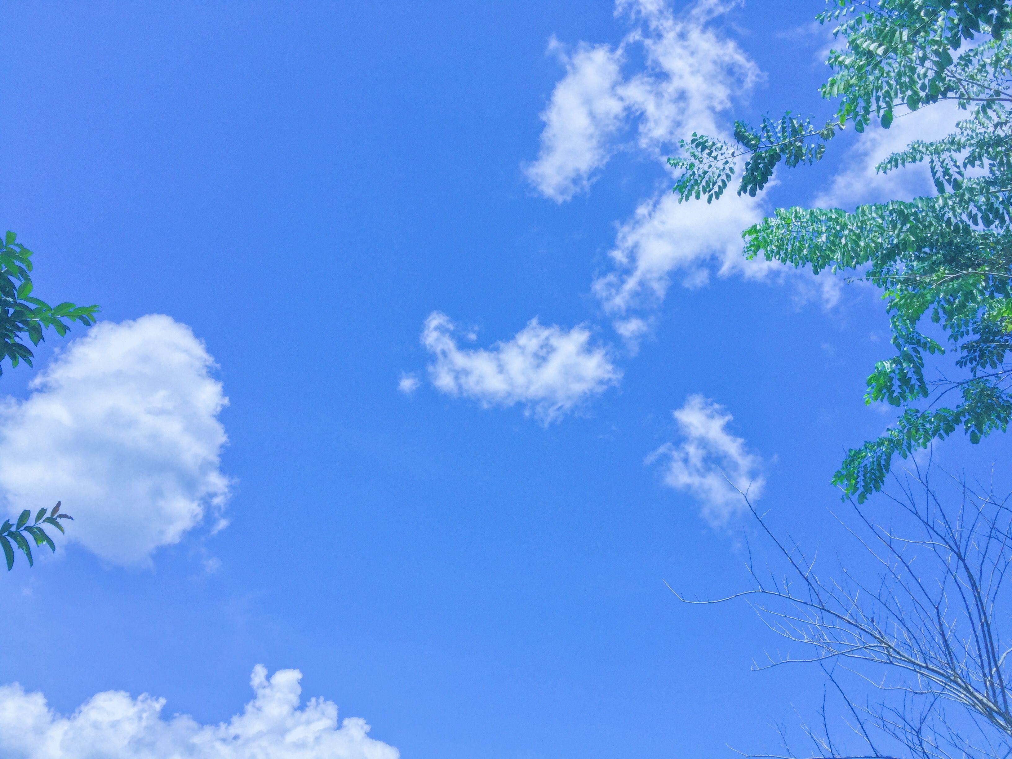 Ảnh bầu trời xanh rì rất đẹp