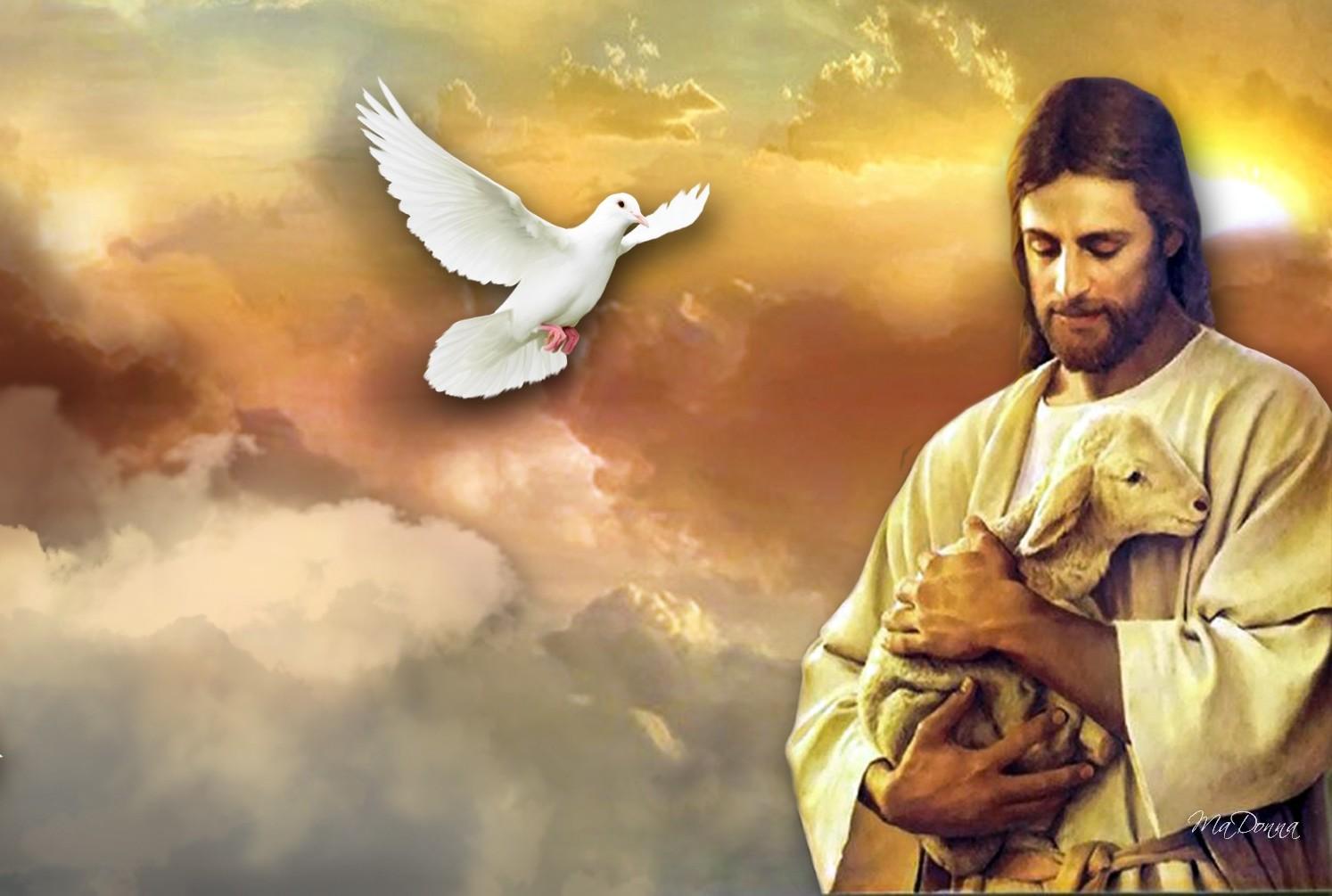 Ảnh đẹp của chúa jesus