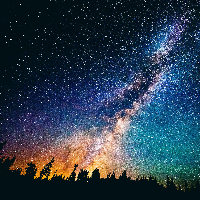 Ảnh đẹp về bầu trời đêm trên khu rừng