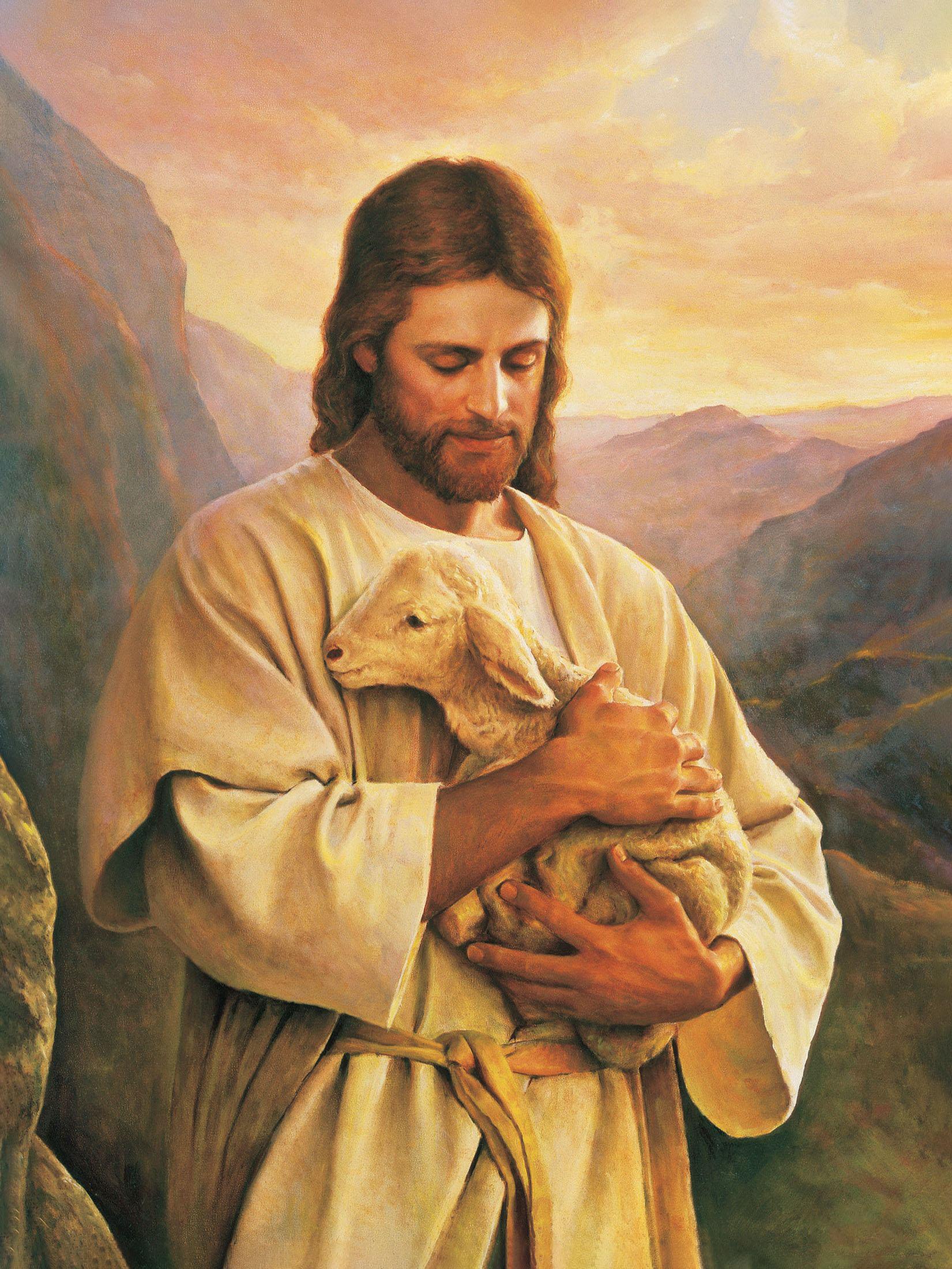 Hình ảnh chúa jesus với chú cừu