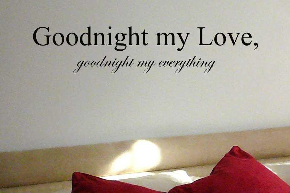 hình ảnh chúc ngủ ngon ngộ nghĩnh
