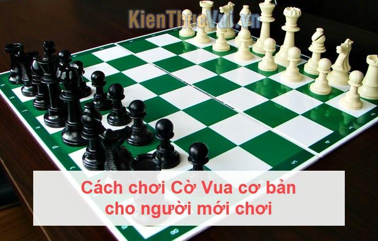 Cách chơi Cờ Vua cơ bản cho người mới chơi
