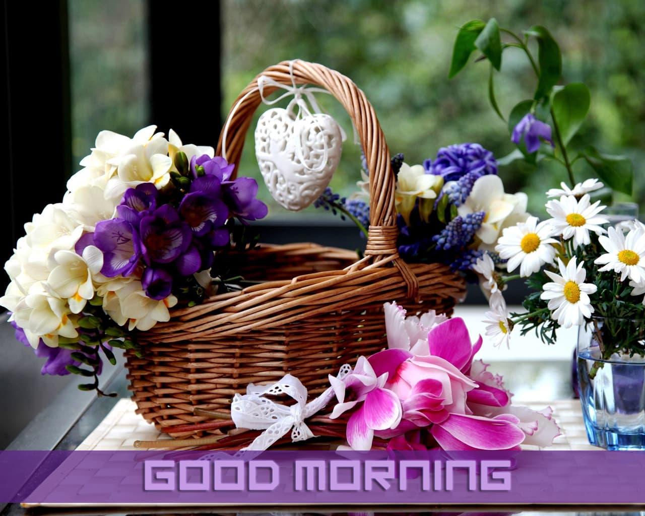 hình ảnh chúc buổi sáng
