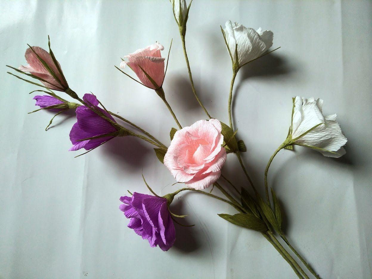 Hình ảnh hoa Cát Tường làm bằng giấy mún đẹp nhất