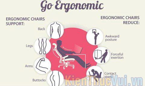 Nguyên tắc áp dụng Ergonomic
