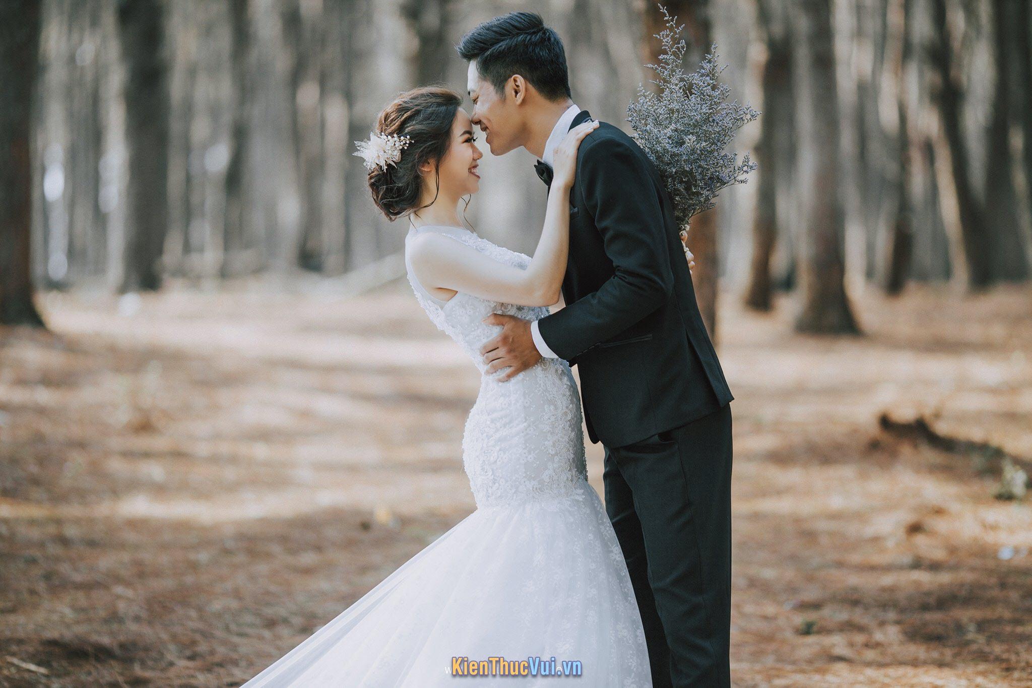 Đám cưới trên đường quê