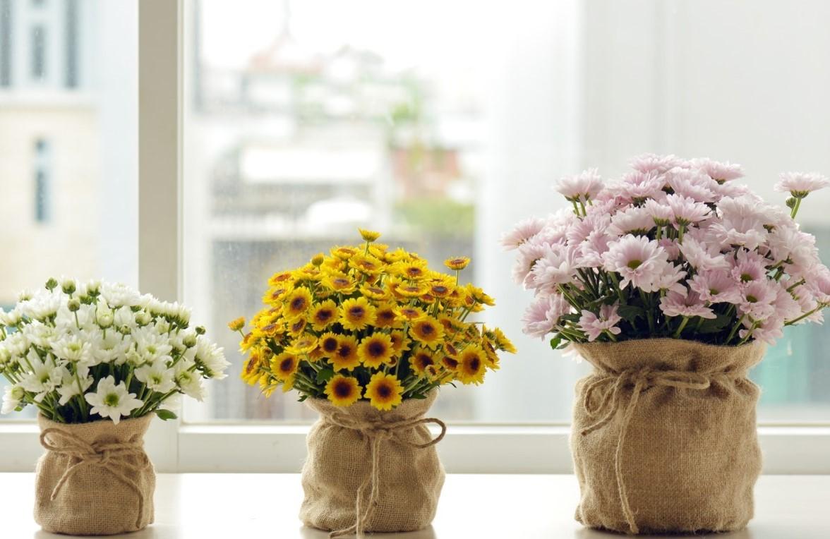 Các kiểu cắm hoa Hướng Dương đẹp nhất
