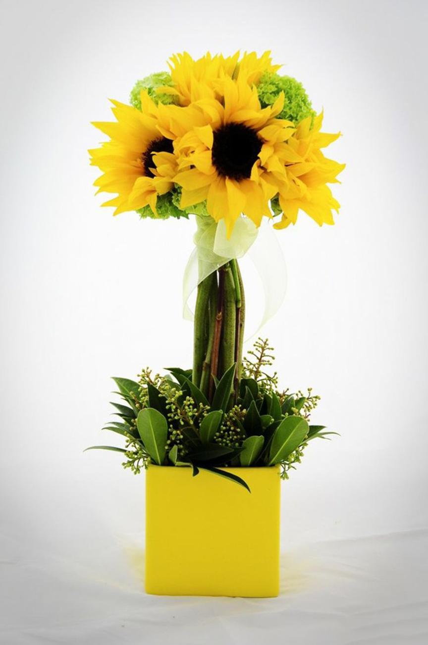 Hình ảnh mẫu cắm hoa Hướng Dương đẹp