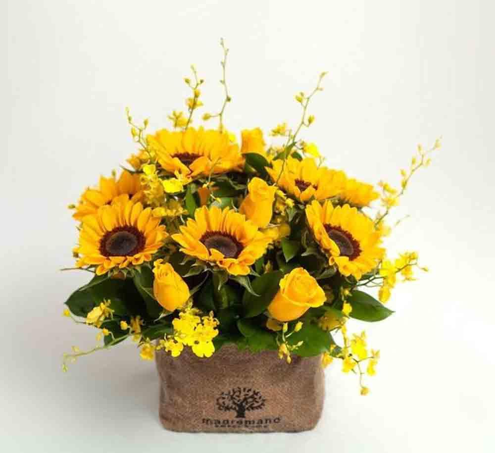 Mẫu cắm hoa Hướng Dương đẹp cho ngày Tết