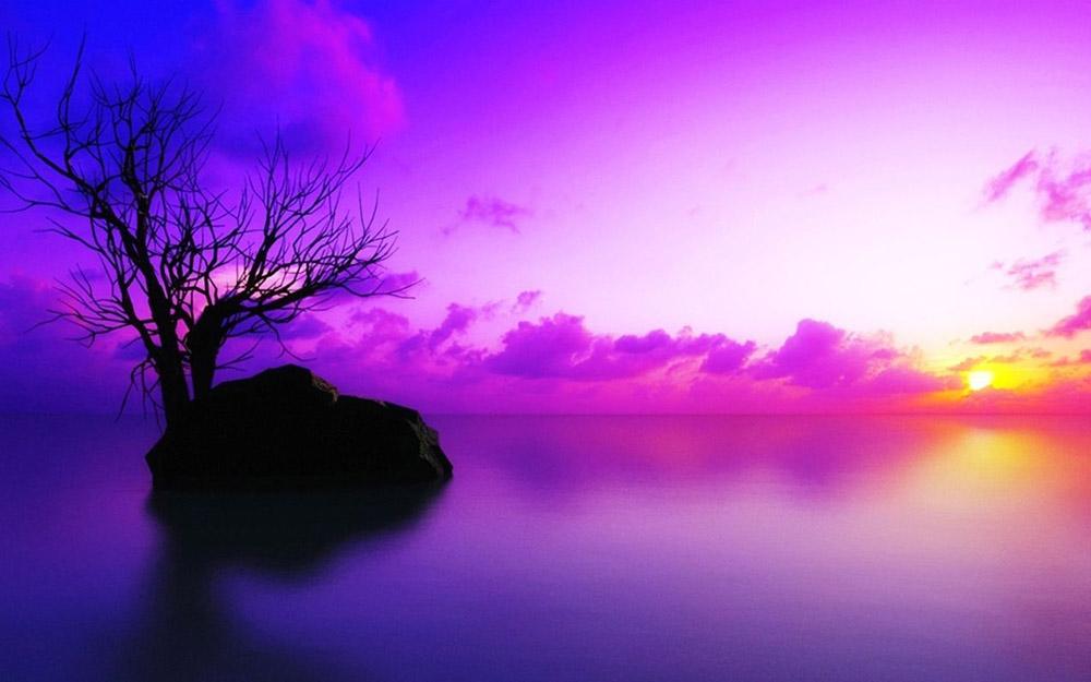 Ý nghĩa của màu tím trong cuộc sống