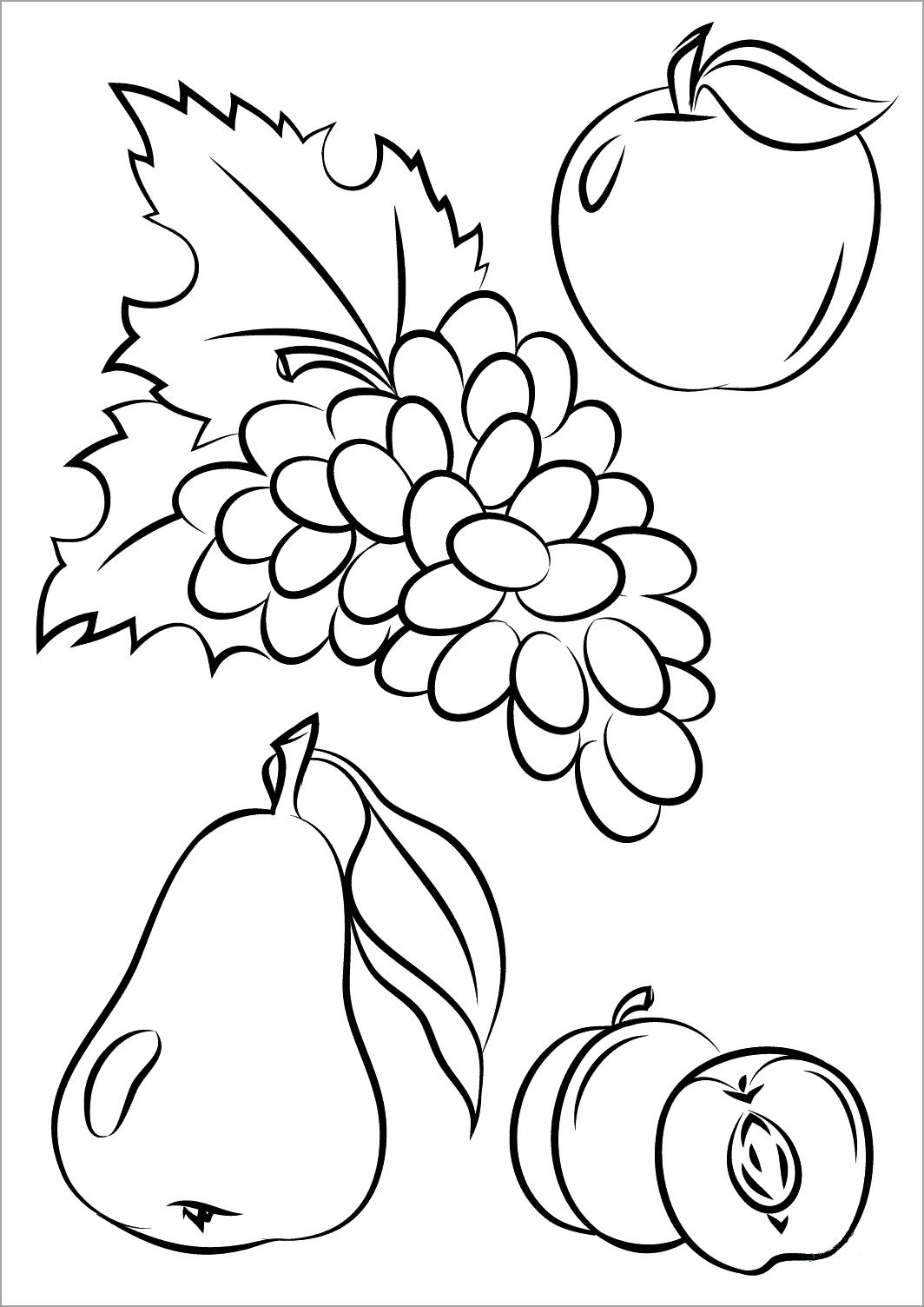 Bé tập tô màu hoa quả