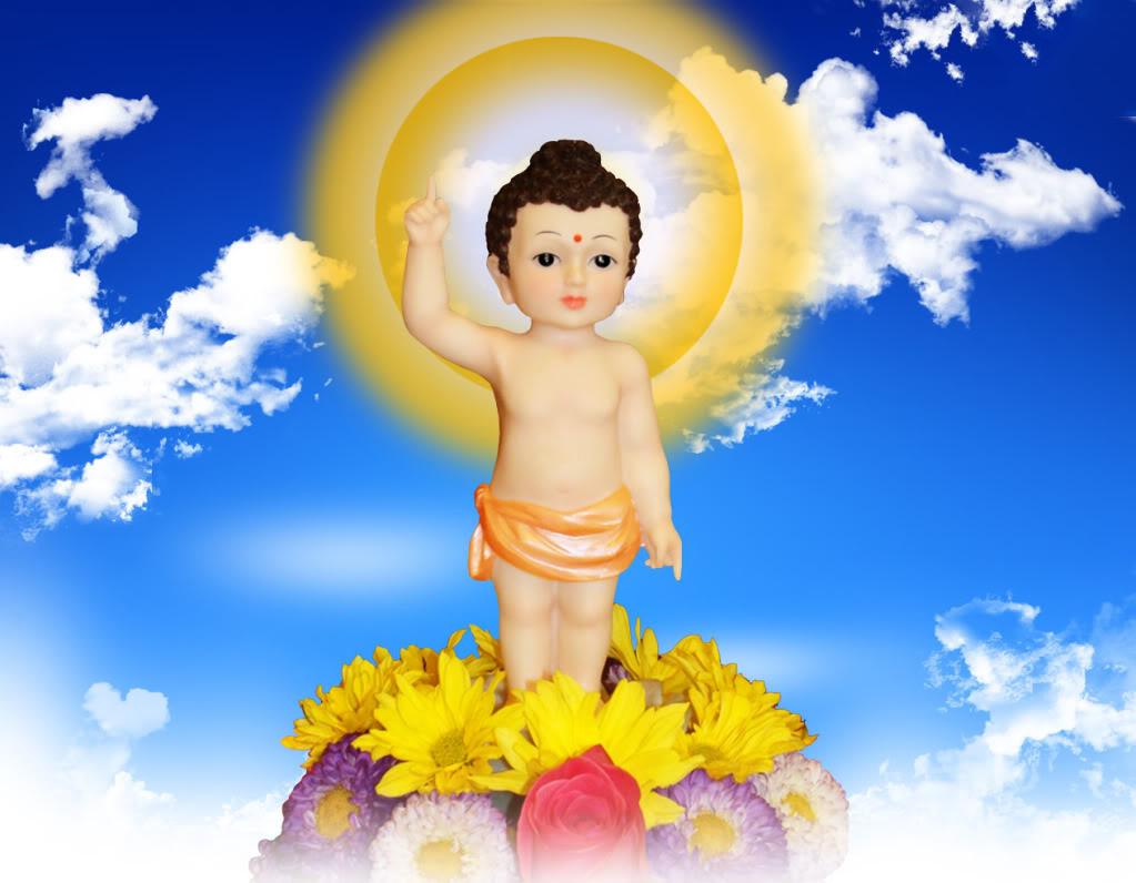 Hình ảnh Đức Phật Đản đẹp nhất