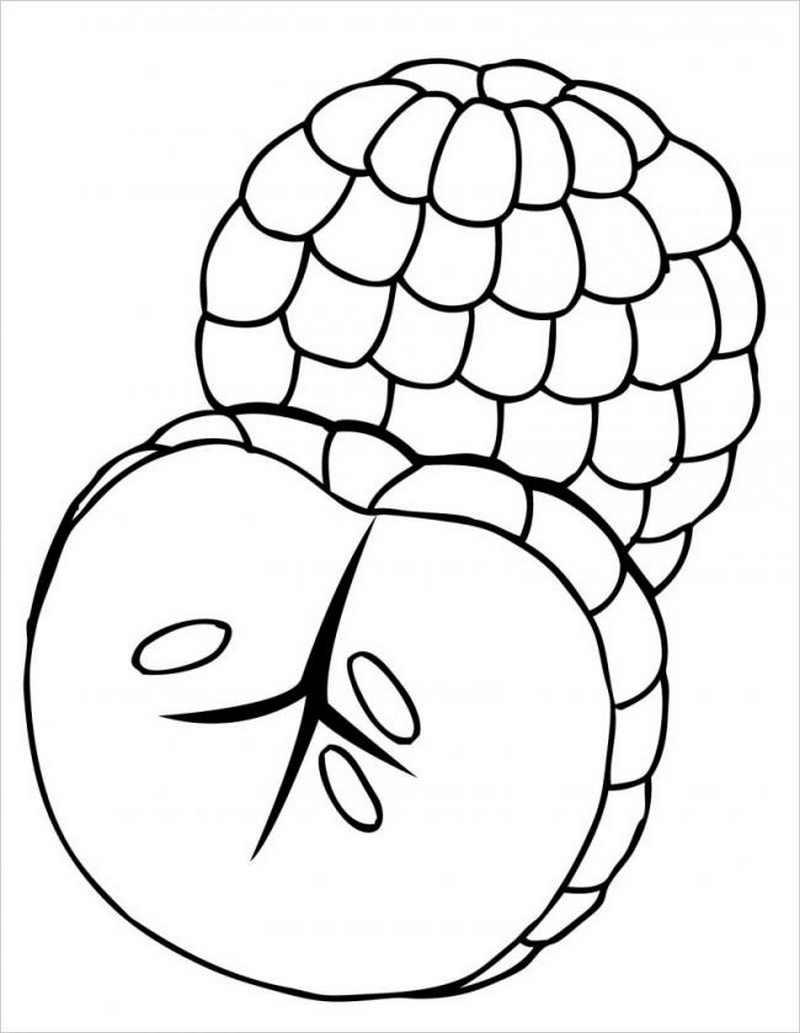 Tô màu trái cây hình trái na đẹp nhất