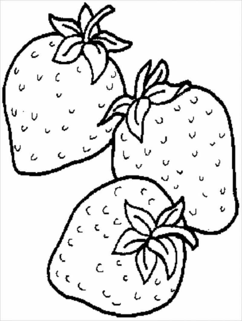 Tô màu tranh các loại trái cây hoa quả