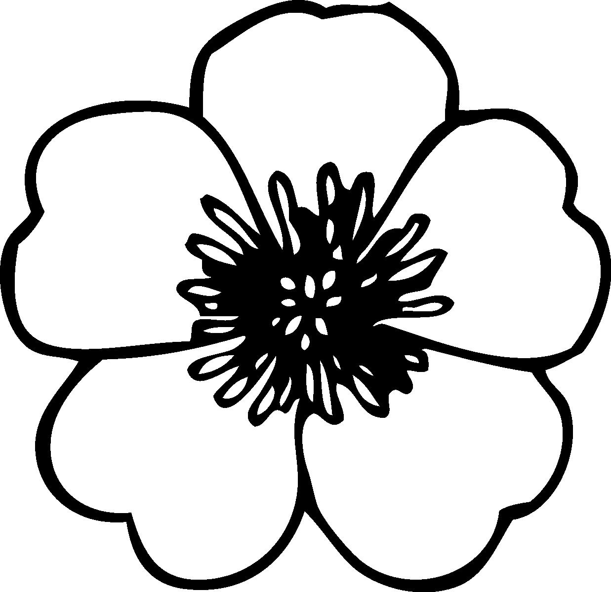 Tranh tô màu bông hoa đơn giản nhất